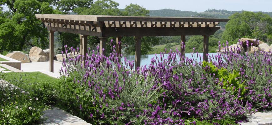 walnut creek landscaper