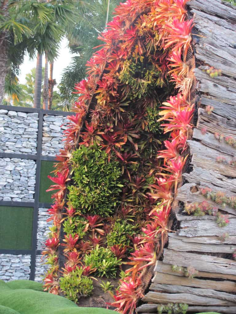 Totally crazy Bromeliads, but what a way to use them. Is this sustainable design?